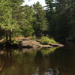 Eels Creek