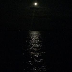 moon over Pigeon Lake, Perseid Meteors