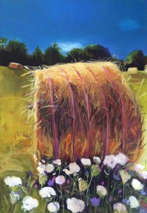 Kawartha Hay Roll