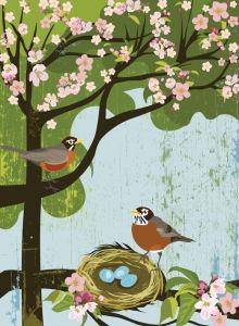 Robin Apple Blossom